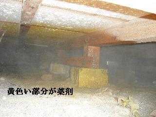 防虫作業・浴室関連作業_f0031037_19455648.jpg