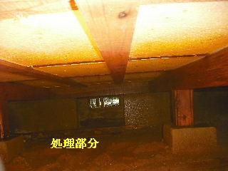 防虫作業・浴室関連作業_f0031037_19462980.jpg