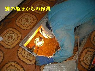 防虫作業・浴室関連作業_f0031037_1947027.jpg