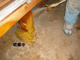 防虫作業・浴室関連作業_f0031037_19471082.jpg