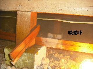 防虫作業・浴室関連作業_f0031037_19473569.jpg