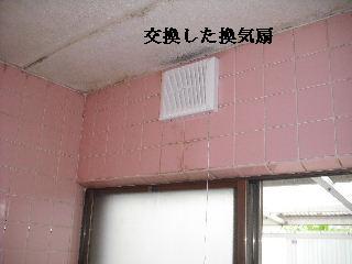 防虫作業・浴室関連作業_f0031037_19491911.jpg