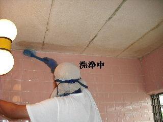防虫作業・浴室関連作業_f0031037_19502358.jpg