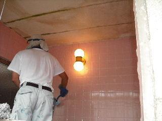 防虫作業・浴室関連作業_f0031037_1951872.jpg