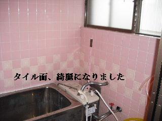 防虫作業・浴室関連作業_f0031037_19523944.jpg