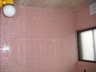 防虫作業・浴室関連作業_f0031037_1952942.jpg