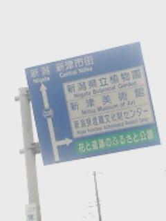 b0050151_611590.jpg