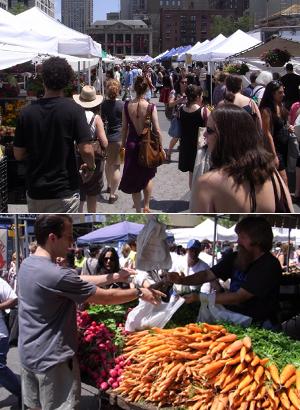 夏のニューヨークの青空市場 グリーンマーケット_b0007805_4471471.jpg