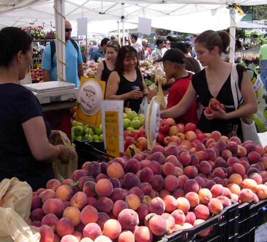 夏のニューヨークの青空市場 グリーンマーケット_b0007805_4482265.jpg