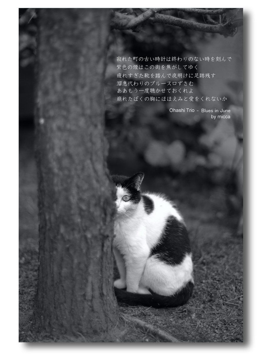 f0071708_23104134.jpg