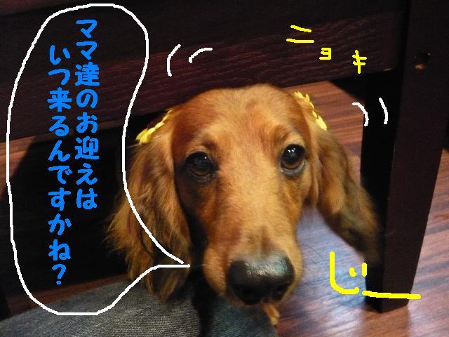b0130018_19123626.jpg