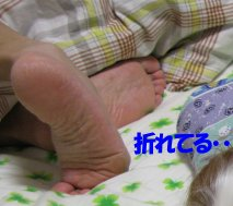b0185323_1512376.jpg