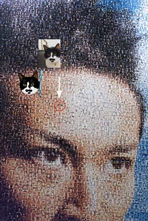 サンテ「キターッ!顔」巨大モザイクアート展(7月18日~7月26日迄)_f0166234_23283651.jpg