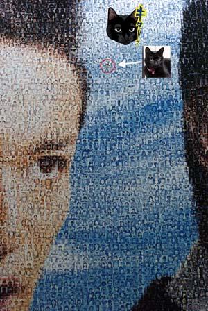 サンテ「キターッ!顔」巨大モザイクアート展(7月18日~7月26日迄)_f0166234_2330635.jpg