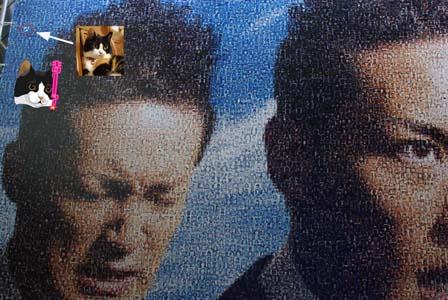 サンテ「キターッ!顔」巨大モザイクアート展(7月18日~7月26日迄)_f0166234_23312010.jpg