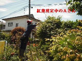 修理工事あれこれ_f0031037_2057231.jpg