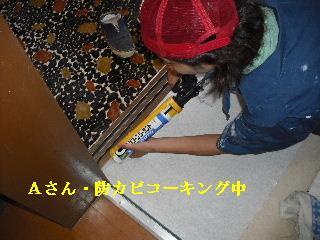 修理工事あれこれ_f0031037_2058185.jpg