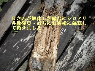 修理工事あれこれ_f0031037_20593464.jpg