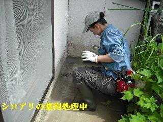 修理工事あれこれ_f0031037_2101443.jpg