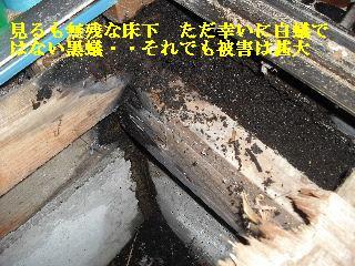 修理工事あれこれ_f0031037_2125560.jpg