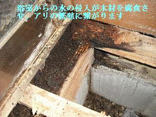 修理工事あれこれ_f0031037_213743.jpg