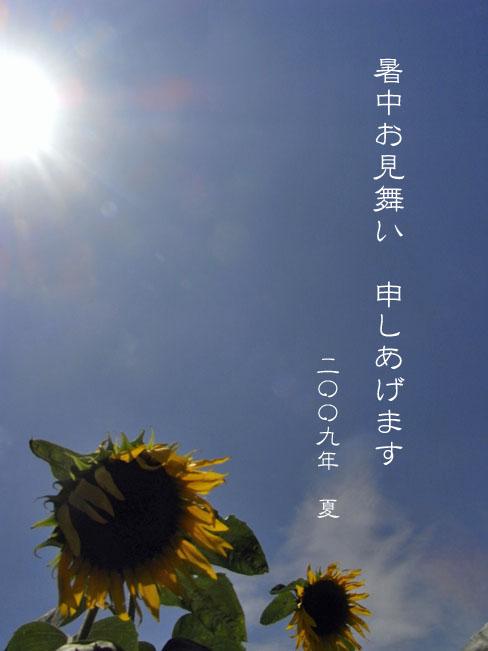 a0052155_1725061.jpg