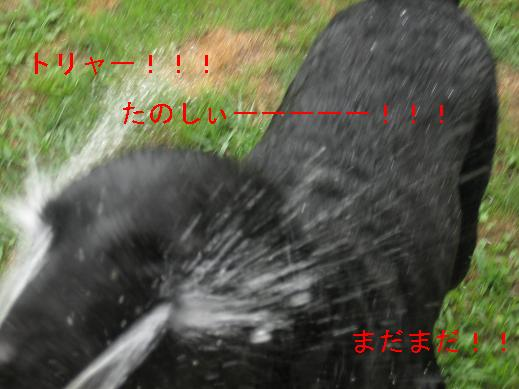 f0093459_15322659.jpg