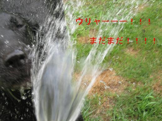 f0093459_15325923.jpg