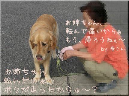 c0107886_0275143.jpg