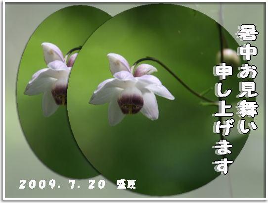 f0164592_20581242.jpg