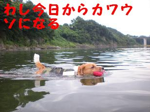 c0188294_1047172.jpg