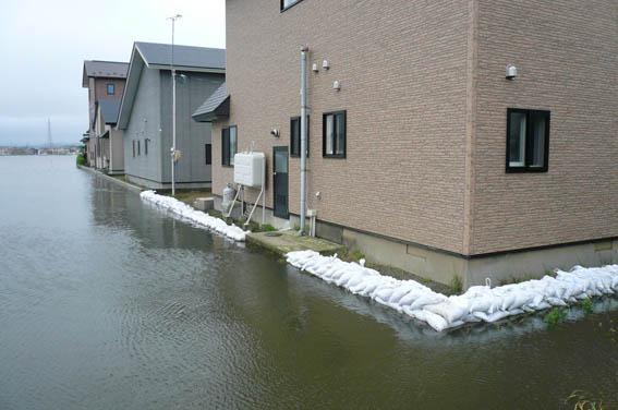 昨日12日の洪水_e0054299_11104255.jpg