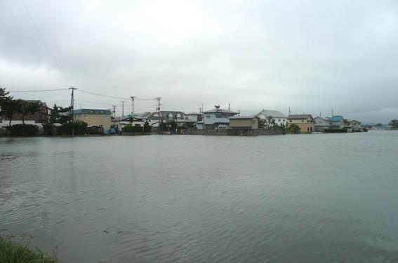 昨日12日の洪水_e0054299_1195039.jpg