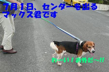 f0121712_181374.jpg