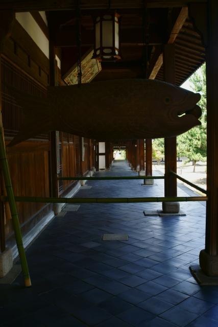 萬福寺の蓮2_e0177413_2245949.jpg