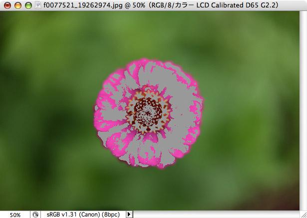 f0077521_2075715.jpg