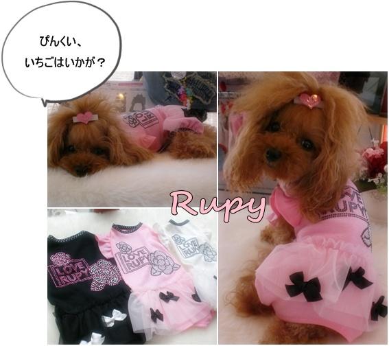 RUPY新作入荷_b0084929_15454431.jpg