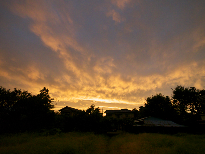 東の空には虹、西の空には夕焼_c0168669_11425879.jpg