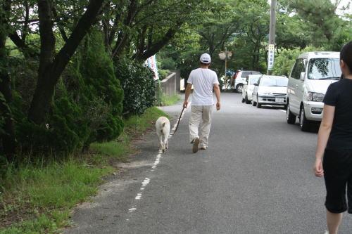 久し振りで、家族皆でお散歩に!!_b0136683_1647932.jpg