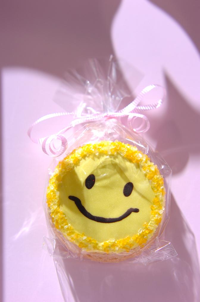 可愛すぎて食べられないクッキー_a0115906_19424912.jpg