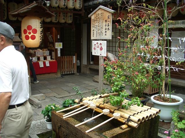 確かめたかった「京都 錦市場」_f0141310_20502782.jpg