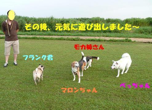 f0121712_15301869.jpg