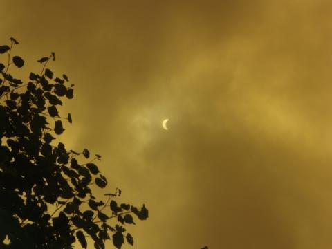 日食_a0023246_11184416.jpg