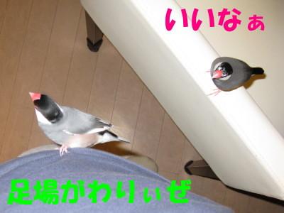 b0158061_20422592.jpg