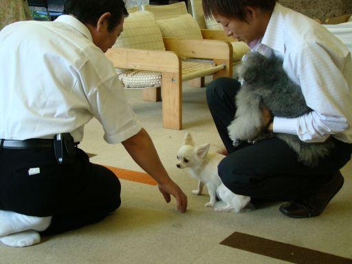 第3回ペット勉強会をいたしました_b0185375_7234976.jpg
