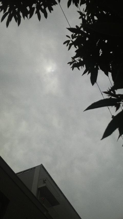 皆既日食 今回は残念でした。_f0052181_1524055.jpg