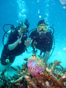ラチャヤイ島でナイス体験ダイビング!_f0144385_2032542.jpg