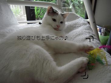c0139488_036258.jpg