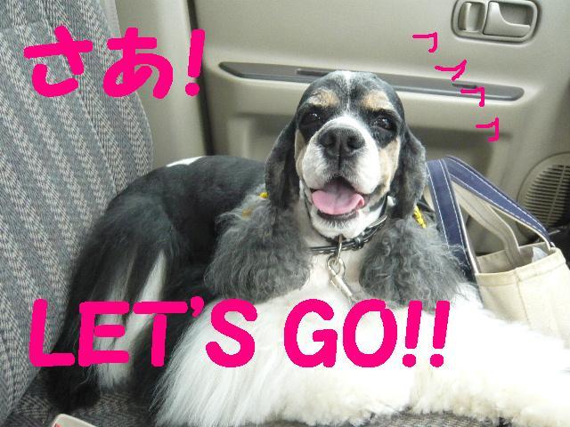 どんなスタイルでも・・・&LET\'S GO!!_b0130018_1901071.jpg