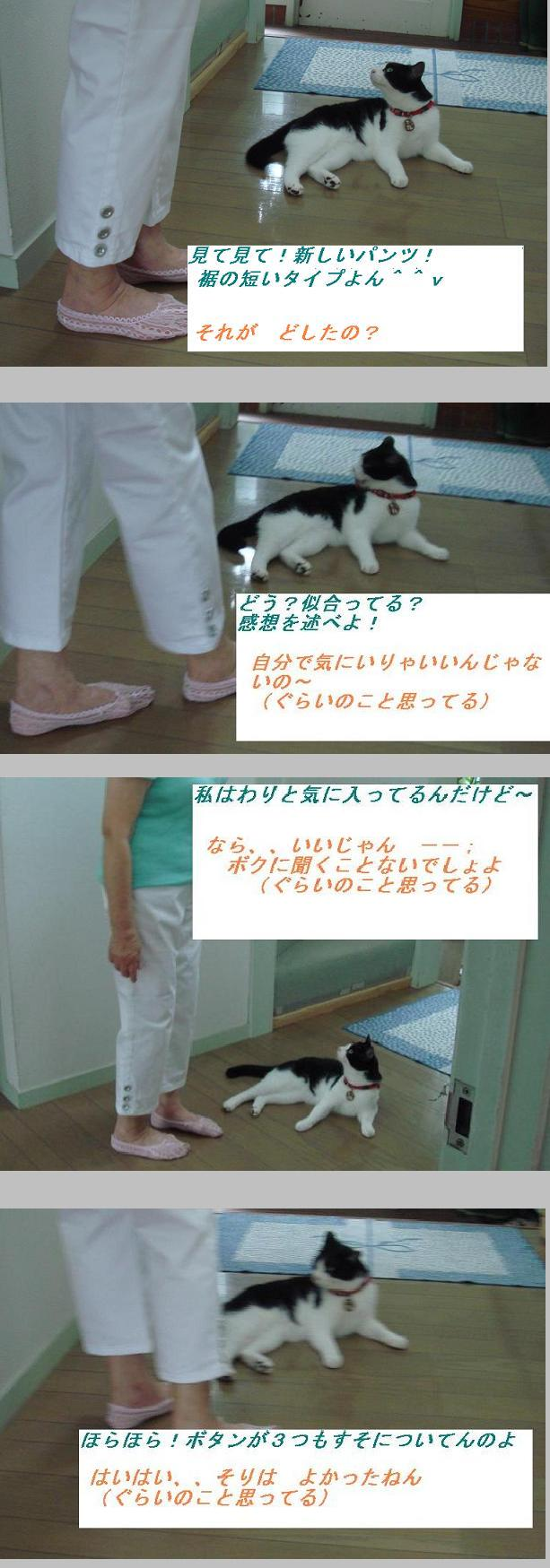 b0147444_10142640.jpg